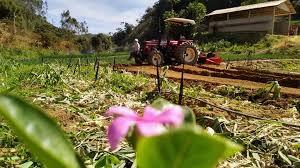 Serra vai ganhar casa do produtor a partir de recurso de Vidigal