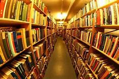 ARTIGO – Livro, o guardião da história – Monoel Goes
